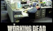 man sleeping office desk working walking dead funny pics pictures pic picture image photo images photos lol