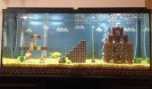 mario brother fish tank aquarium nintendo nes funny pics pictures pic picture image photo images photos lol