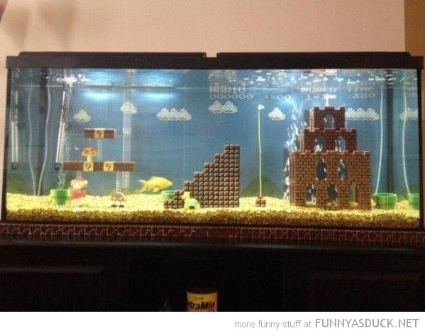 mario brother fish tank aquarium nintendo nes funny pics pictures pic picture image photo images photos lol