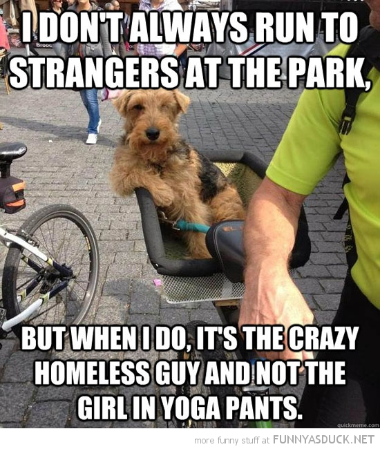 most interesting dog meme run up to people park crazy homeless guy animal funny pics pictures pic picture image photo images photos lol