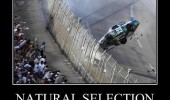 natural selection people leaning towards nascar race car crash funny pics pictures pic picture image photo images photos lol