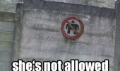 no wide loads sign your momma so fat not allowed enter funny pics pictures pic picture image photo images photos lol