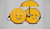 orange fruit skin peel umbrella comic funny pics pictures pic picture image photo images photos lol