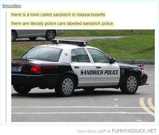 sandwich police tumblr comment car funny pics pictures pic picture image photo images photos lol