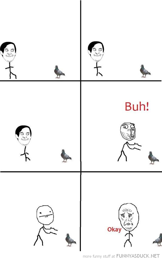 scare pigeon bird rage comic meme funny pics pictures pic picture image photo images photos lol