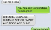 texts from dog sms message knock joke door funny pics pictures pic picture image photo images photos lol