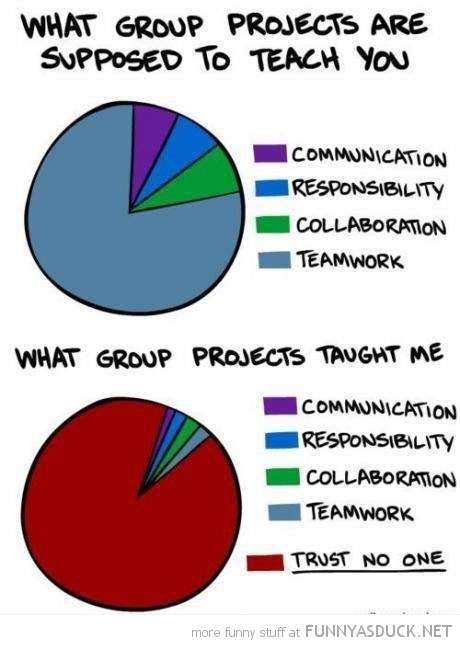 what group projects taught me charts trust no one funny pics pictures pic picture image photo images photos lol