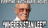 when watch marvel movies wheres stan lee funny pics pictures pic picture image photo images photos lol