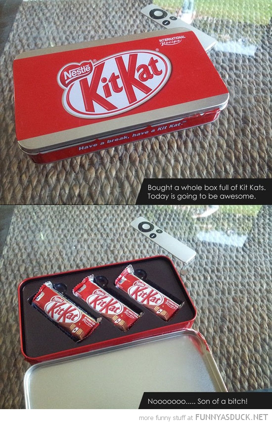 whole box of kitkats biscuits funny pics pictures pic picture image photo images photos lol