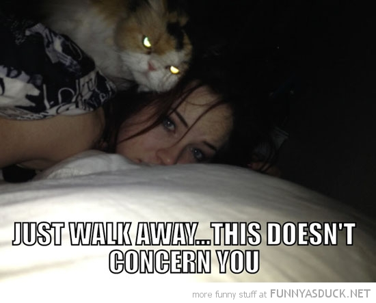 cat lolcat animal walk away doesn't concern you girls head funny pics pictures pic picture image photo images photos lol