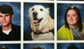 dog animal year book senior year funny pics pictures pic picture image photo images photos lol