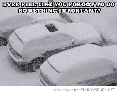 forgot something important open sun roof car snow funny pics pictures pic picture image photo images photos lol