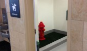 san diego airport bathroom dogs fire hydrant funny pics pictures pic picture image photo images photos lol