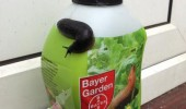 slug snail killer packet like i give fuck animal funny pics pictures pic picture image photo images photos lol