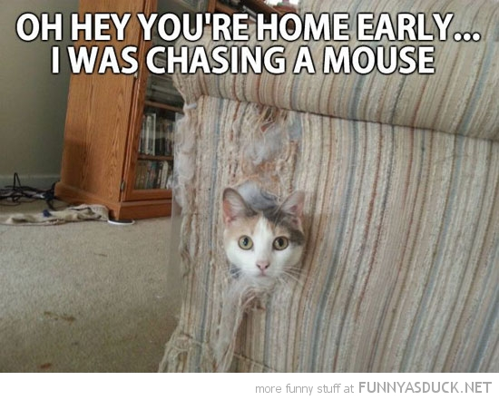 You're Home Early