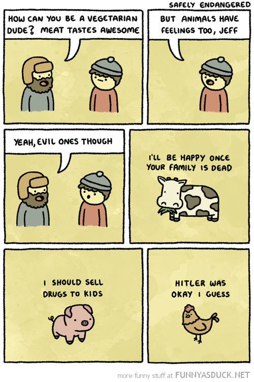 Animals Have Feelings