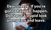 dear sneeze stupid look face quote funny pics pictures pic picture image photo images photos lol