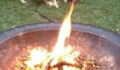 dog animal fire mouth super effective funny pics pictures pic picture image photo images photos lol