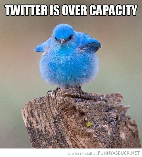 Twitter Over Capacity