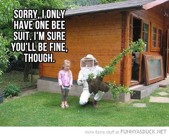 girl bee suit you'll be fine funny pics pictures pic picture image photo images photos lol