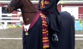 girl horse harry trotter potter funny pics pictures pic picture image photo images photos lol