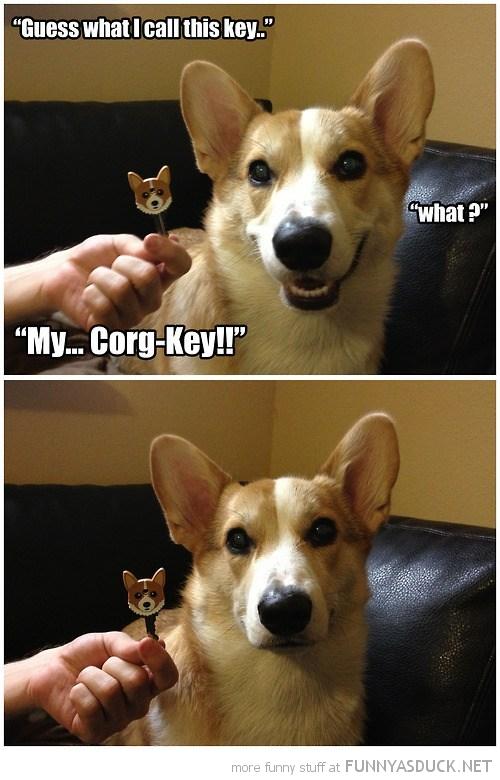 Corg-Key