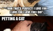 petting cat dog animals kill you funny pics pictures pic picture image photo images photos lol