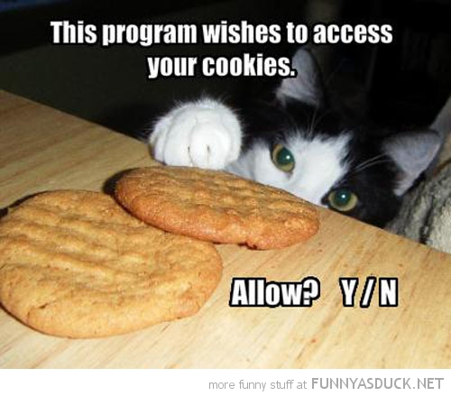 Access Your Cookies