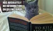 cat lolcat animal reading book kill mocking bird  funny pics pictures pic picture image photo images photos lol