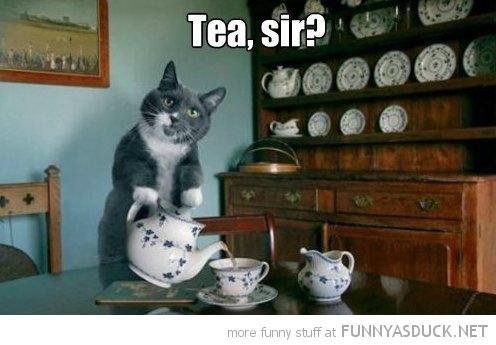 Tea, Sir?