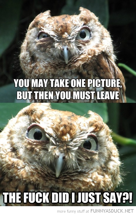 Take One Picture