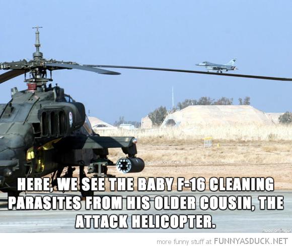 Baby F16