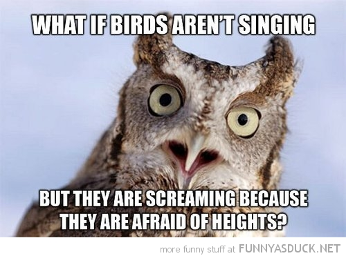 Birds Aren't Singing
