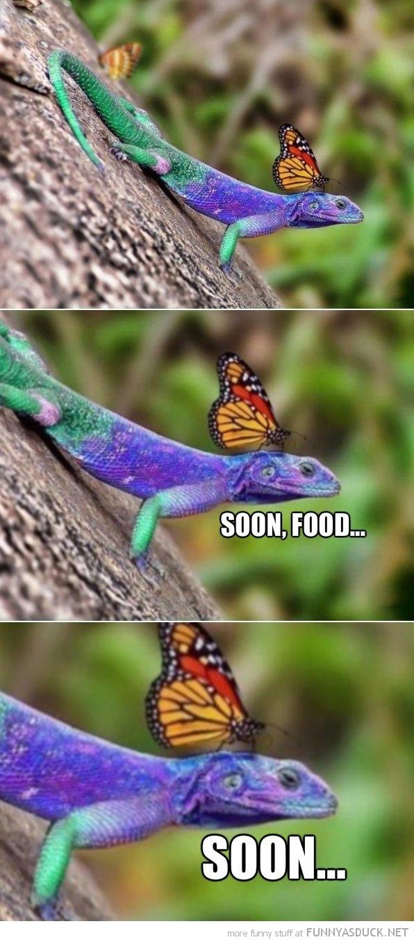Soon, Food