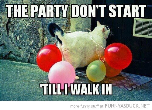 Party Don't Start