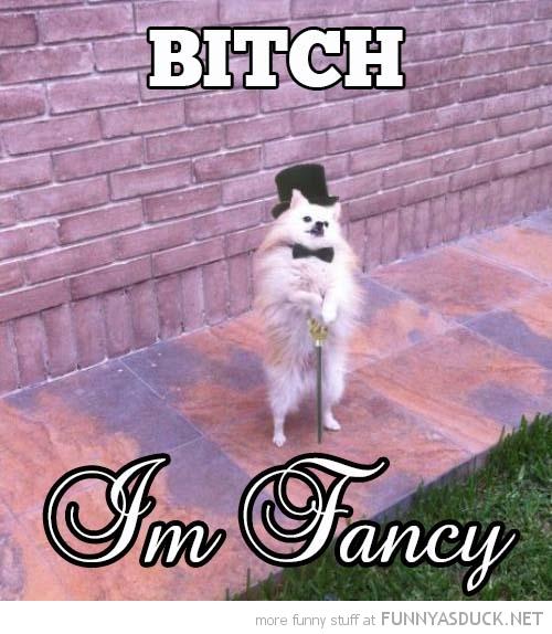 I'm Fancy