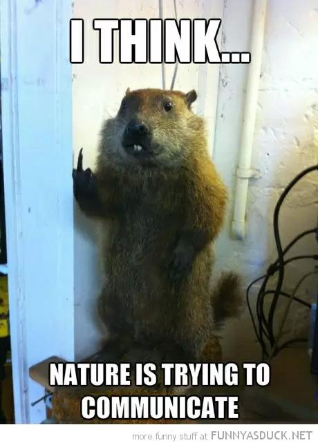 Nature's Communication