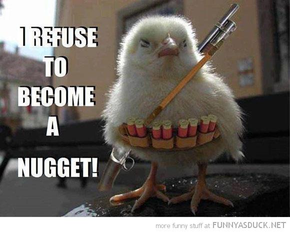 Rambo Chick