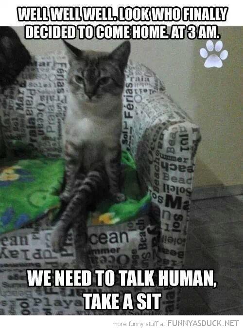 Take A Sit