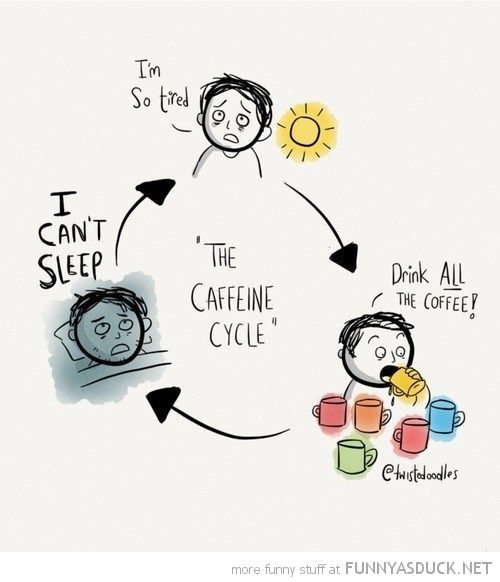 The Caffeine Cycle