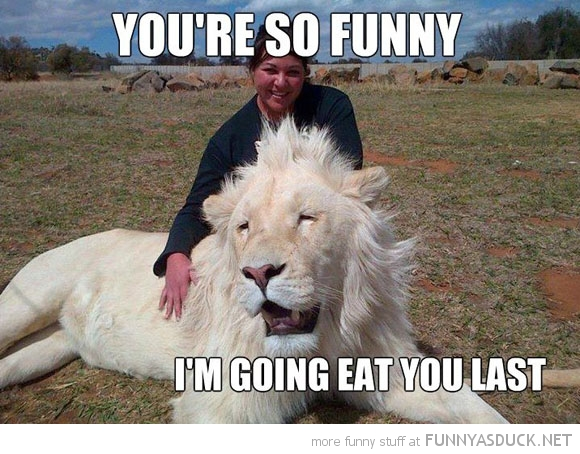 funny-happy-lion-eat-you-last-pics.jpg