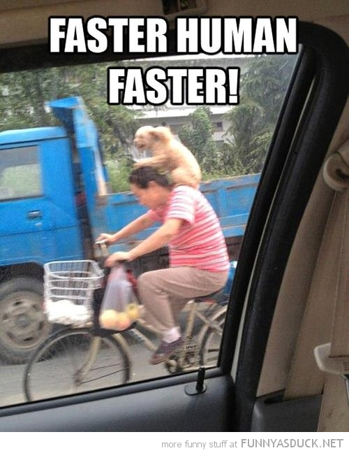 Faster Human