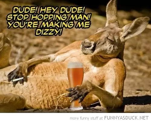 Hey Dude!