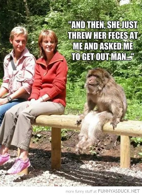 Monkey Problems