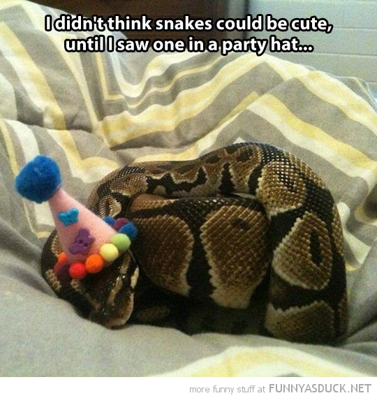 Party Snake