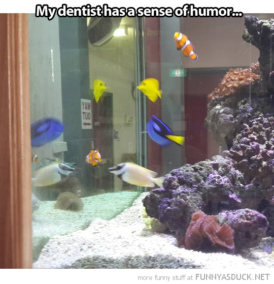 Nemo Tank