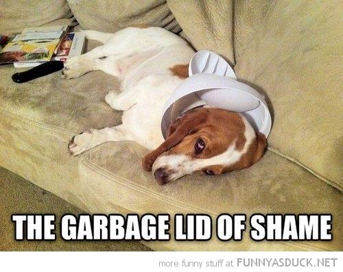 The Garbage Lid Of Shame