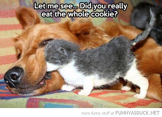 Let Me See...
