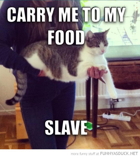 Carry Me, Slave