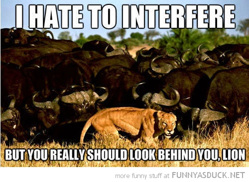 I Hate To Interfere...